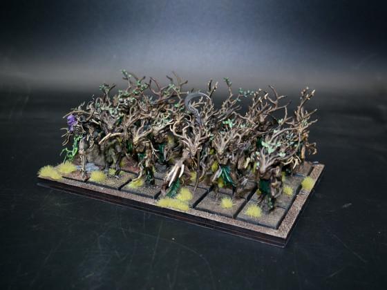 Sylvan Elves (SE) - Dryads