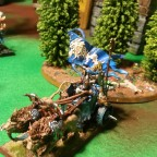 Commander BSB on Lion Chariot