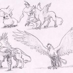 Study: Maturation of the Imperial Griffon