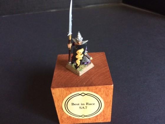 DE Spear Elf