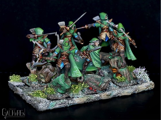 Highborn Elves Grey Watchers