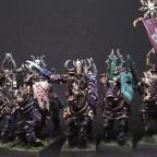 WDG Warrior/Wasteland Knights