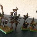 Goblin Shamans