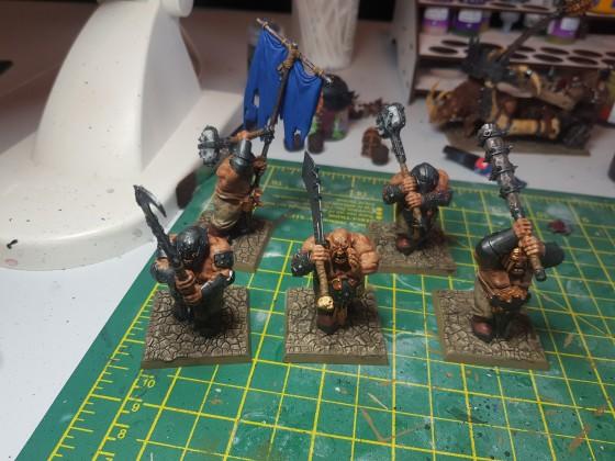 Scottish Knight Bruisers