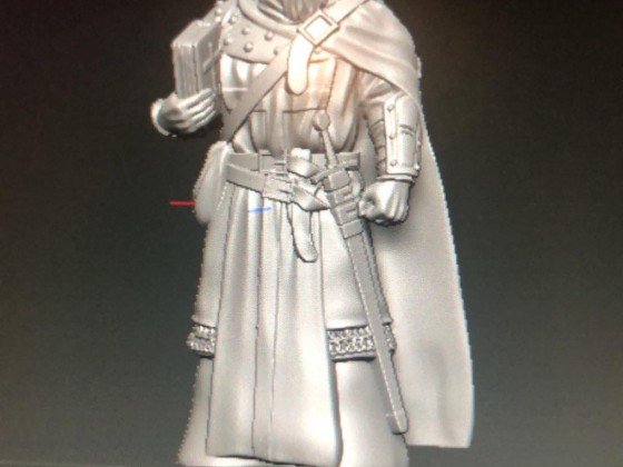 Priest for KoE skirmish campaign warband