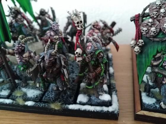 Soothsayer and wildhorn herd