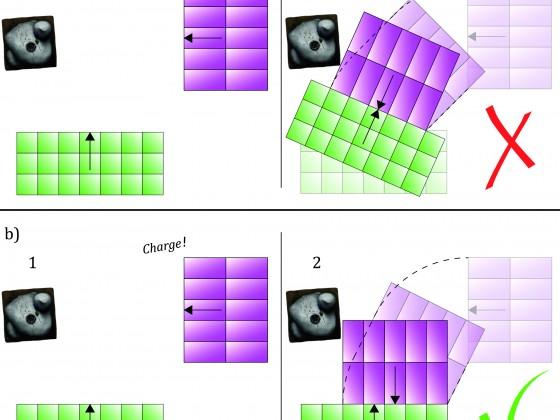 FIGURE_SRB_40_Maximized Charge Models - master
