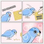 a self-indulgent meme