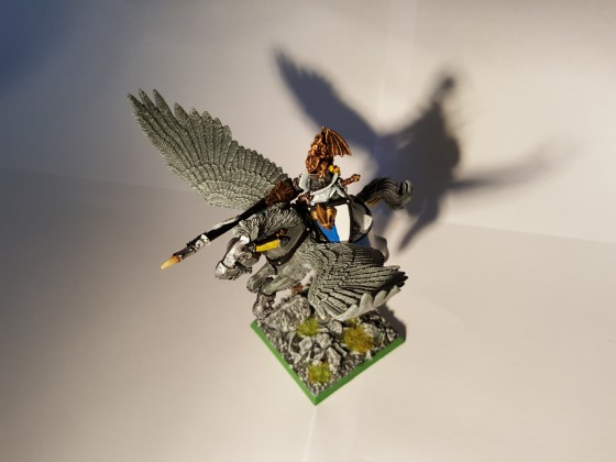 Paladin on Pegasus