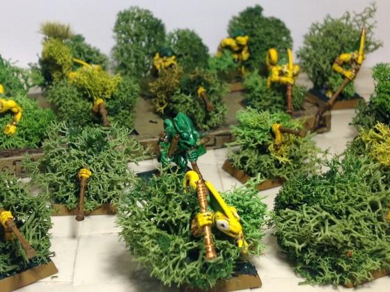 Chameleons, ready to strike!