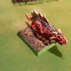 Salamander 1