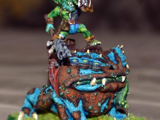 Gobling king Dart Toad (Huntsmen spider)