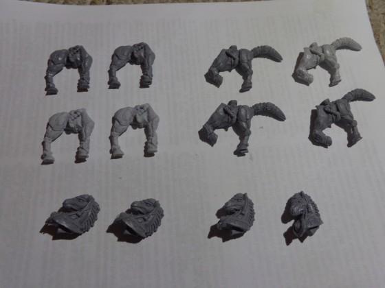 TMS Skeleton Cavalry