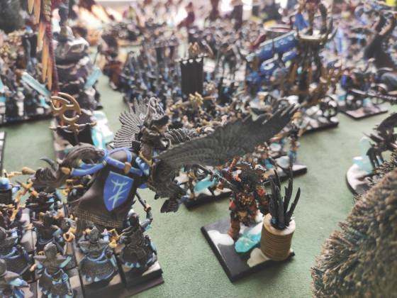 Dark Elf - WDG clash 9