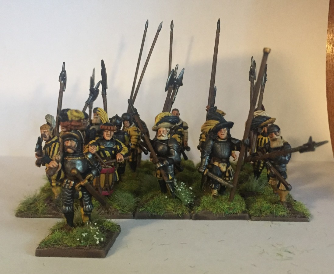 20 Heavy Infantry & a Marshal