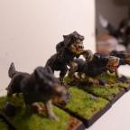 Blog image - Dire Wolves