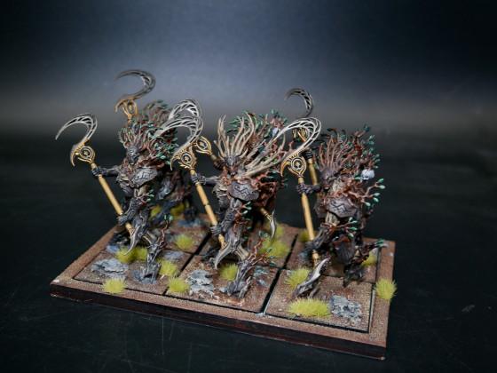 Sylvan Elves (SE) - Thicket Beasts