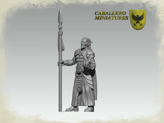 High Warden of the Flame by Caballero Miniatures